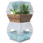 alt Aqualibrium
