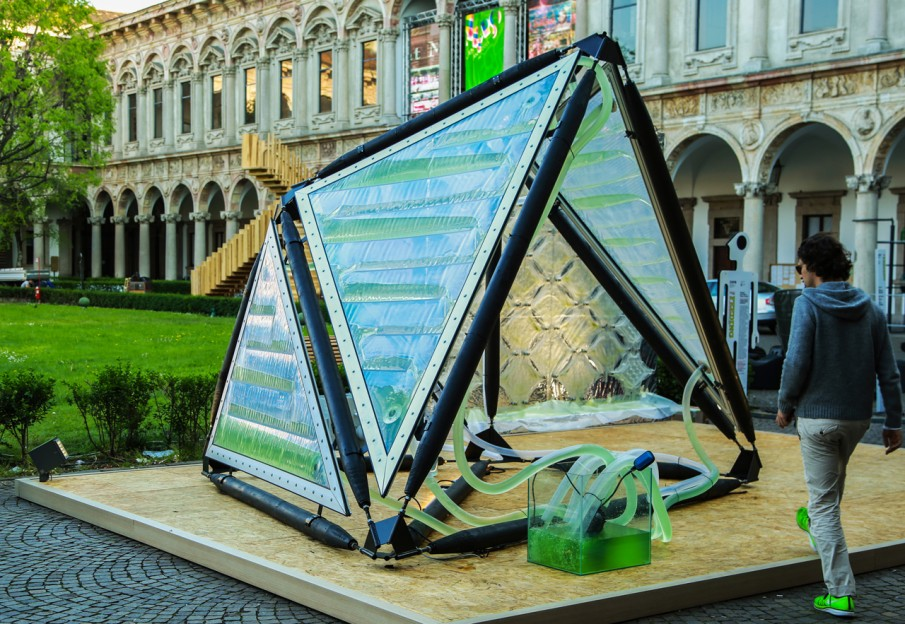 Urban Algae Canopy | INSIDEflows