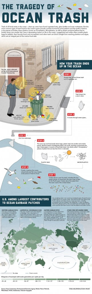 Ocean Garbage Patches