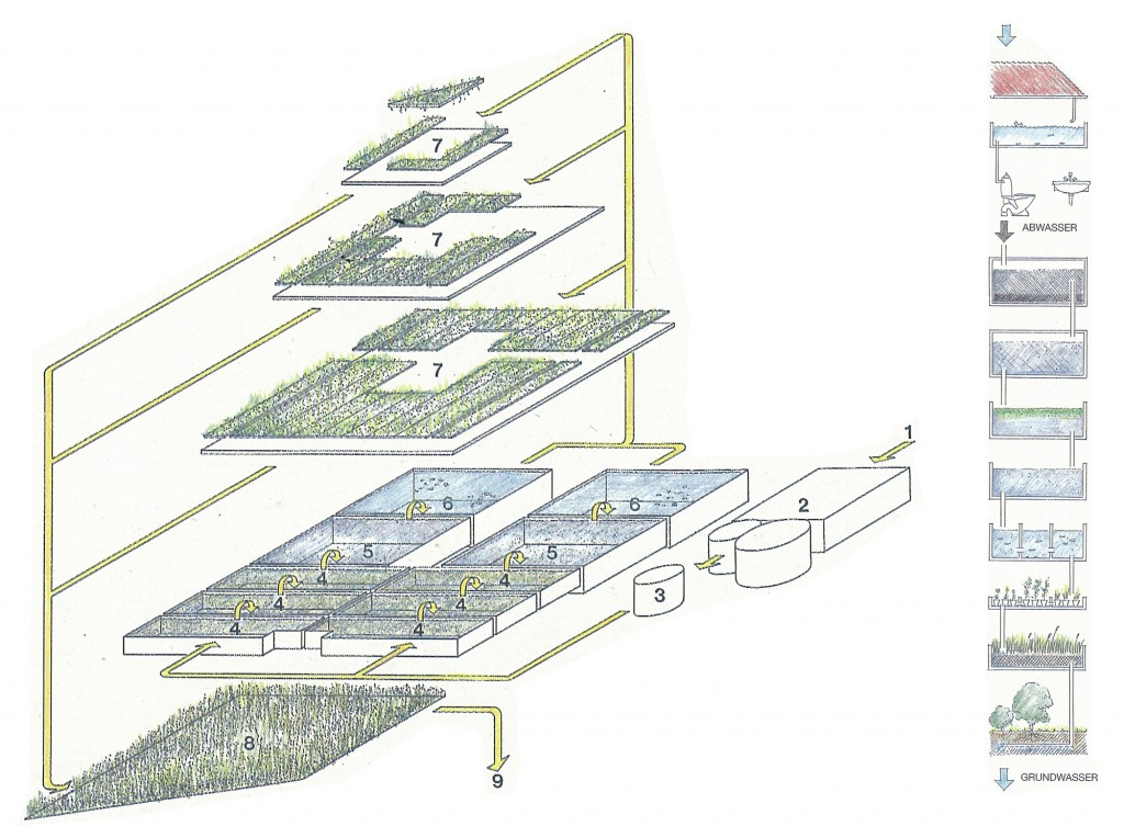 Cross section of the pyramid