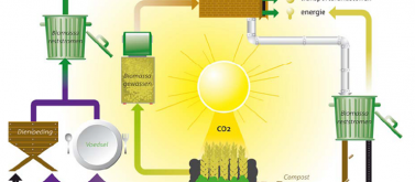 kringloop bio-based grondstoffen