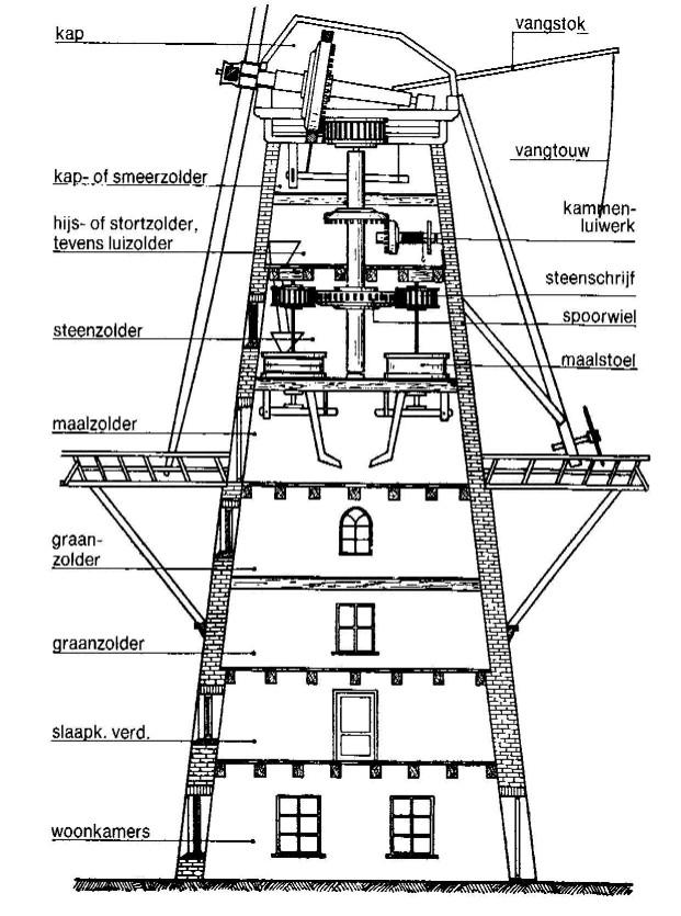 Classic Windmill Insideflows